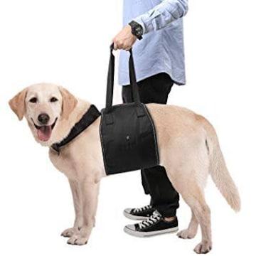 介護ハーネス - Pawaboo 大型犬用 歩行補助 足腰の弱くなった老