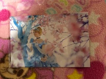 ディズニーリゾート ポストカード シンデレラ プリンセス