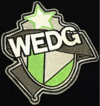 《WEDG》JKT スワッガー ナイトレイド ステューシー FAT BAL