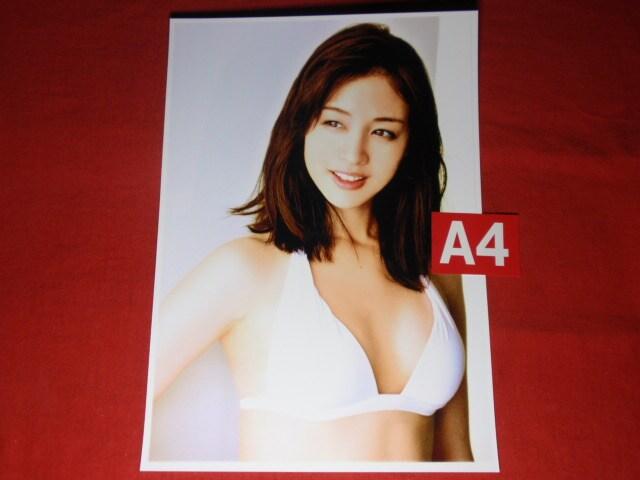 ★新井 恵理那(あらい えりな)※オマケ付き < タレントグッズの