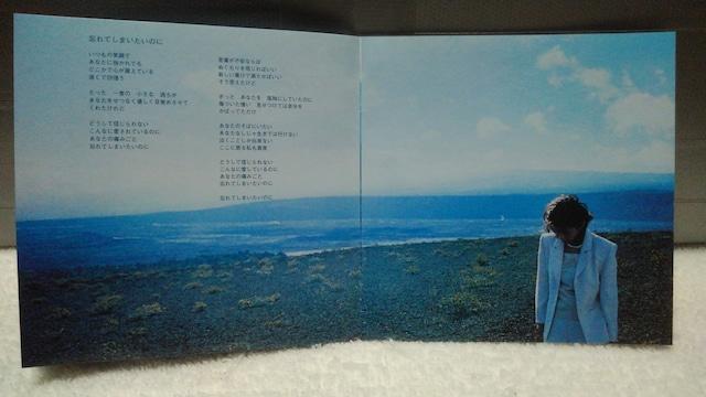 大黒摩季 MOTHER EARTH < タレントグッズの