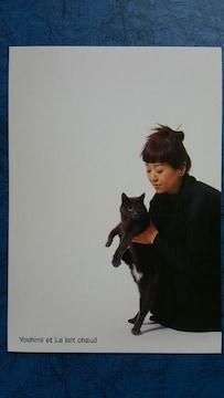 岩崎良美 ポストカード1枚