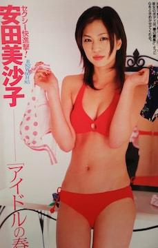 安田美沙子・蛯原友里・内山理名【週刊現代2006年ページ切取】
