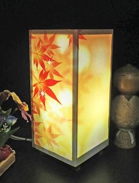 華燭の宿り木 黄金紅葉 SG-056 神秘な灯りの微笑みを!!