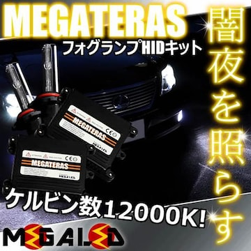mLED】レクサスLS460L前期中期/フォグランプHIDキット/HB4/12000K