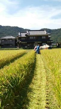 令和2年産米★キヌヒカリ(兵庫のブランド米)玄米25�s農家直送