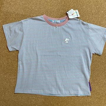 新品タグ付き160半袖Tシャツ クレヨンしんちゃんシロボーダー�C