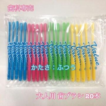 【送料無料】 歯科専売 大人用バリュー歯ブラシ 20本 ふつう