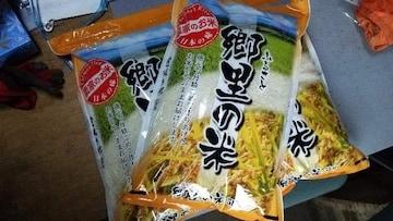 農家のお米あきたこまち特別栽培米10キロ