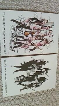 [非売] 東京スカパラダイスオーケストラ 甲本ヒロトポストカード