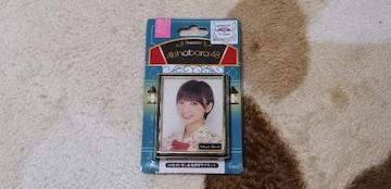 元AKB48篠田麻里子☆AKB48推し劇場壁写マグネット!