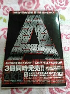 AKB 48VISUAL Book 2010