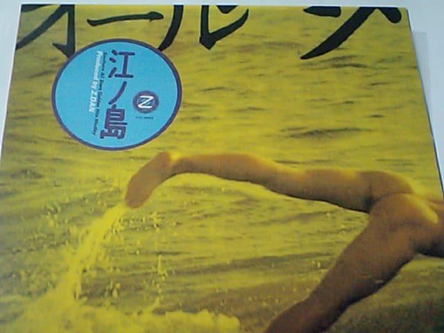 激レア貴重盤! サザンオールスターズ ノンストップMEGA MIX!幻のアナログ盤 < CD/DVD/ビデオの
