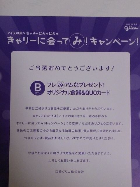 当選品★アイスの実×きゃりーぱみゅぱみゅ オリジナル食器&QUOカード★ < タレントグッズの