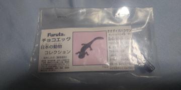 オオダイガハラサンショウウオ★チョコエッグ 日本の動物コレクション■Furuta