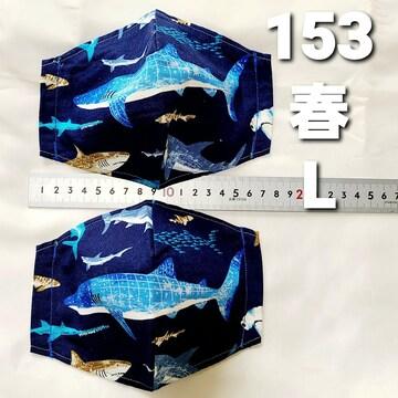 No.153 マスクカバー 2枚セット ゴム付き ゆうパケット送料 ¥180