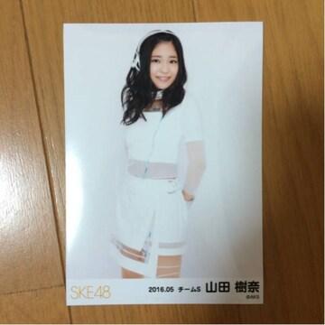 SKE48 山田樹奈 2016.05 生写真 AKB48