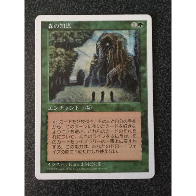 ●MTG 5ED 森の知恵/Sylvan Library 日本語 1枚●
