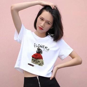 夏の半袖の女子学生韓版の上着の女ins潮3