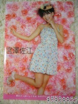 【宮澤佐江/AKB48】《New》上質クリアファイル