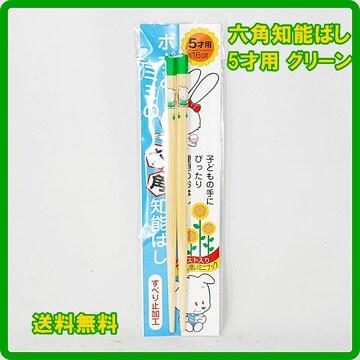 正規 日本製 六角知能箸 5才用 16cm グリーン 子供箸 箸匠せいわ