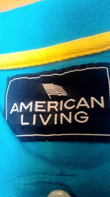 AMERICAN−LIVING 鷲 刺繍 カノコ半袖 スカイブルー サイズXXL→3XL位 < 男性ファッションの