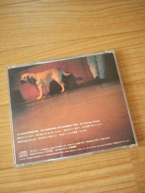 中古 DEEN/I wish CD < タレントグッズの