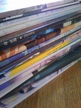 青エク/青の祓魔師同人誌小説雪燐大量19冊  まとめて