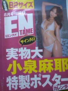 小泉麻那雑誌付録の未開封のポスター