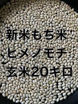令和3年新米もち米玄米20キロ