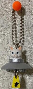 猫は宇宙人だった!連れ去られるネズミ付き シロ