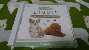 非売品DVD★こいぬの上手な育て方
