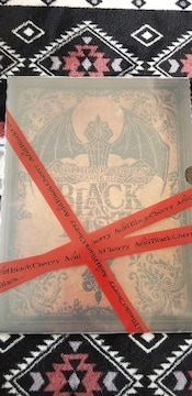 Acid Black Cherry 2008 パンフレット