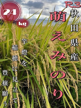 農家直送!令和3年 秋田県産【萌えみのり】玄米24kg 1等米 新米