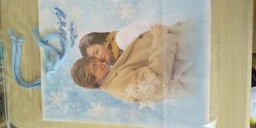 冬のソナタ紙バッグ/レア物