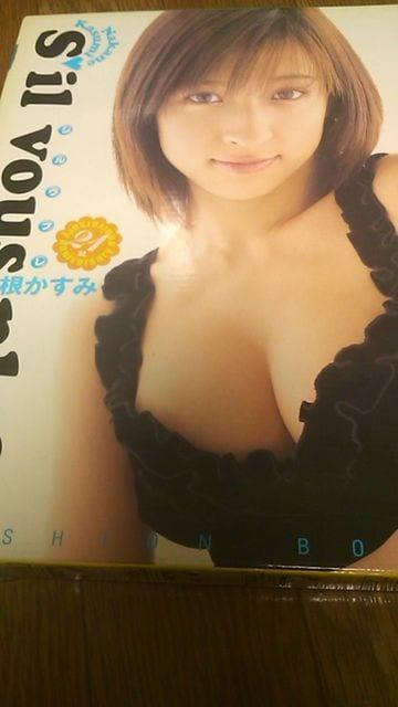 仲根かすみ写真集〜付属品3点完品  < タレントグッズの