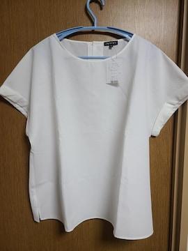 INDIVI昨季新品白半袖サッカーブラウスカットソー大きいサイズ4212号13号シャツ