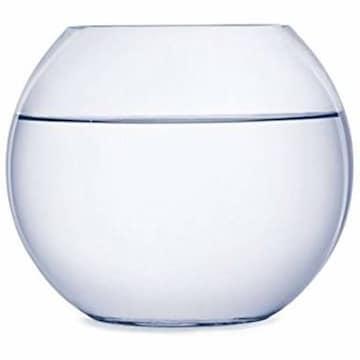18cm SACHI ガラス 花瓶 テラリウム 観葉植物 インテリア ア