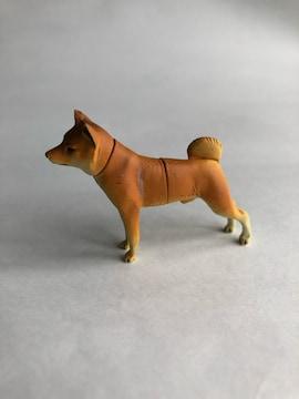 柴犬 チョコエッグ