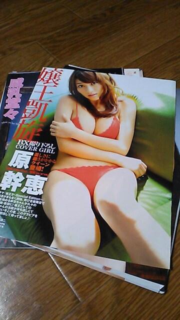 原幹恵〜グラビア雑誌からの切り抜きA〜送料込み < タレントグッズの