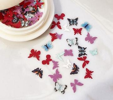蝶のフレーク/ホロ(ケース入り)