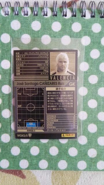 0405 WGK カニサレス < トレーディングカードの