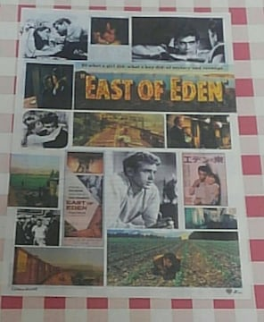 『エデンの東』チラシ ジェームズ・ディーン