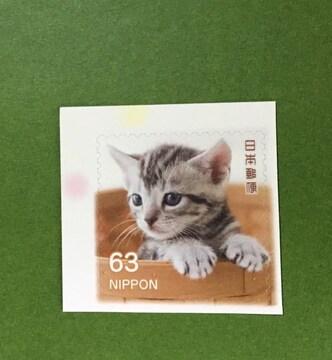 ネコ(アメリカンショートヘア)63円切手1枚★シール式