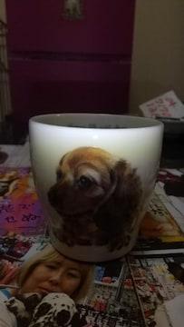 ダックスマグカップ