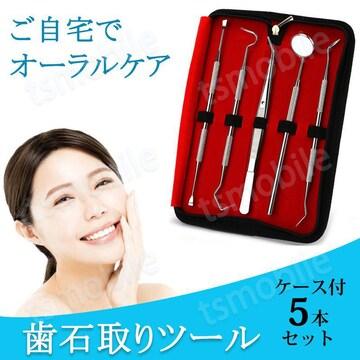 歯石取り 5本セット ケース付き スケーラー 歯垢 食べか