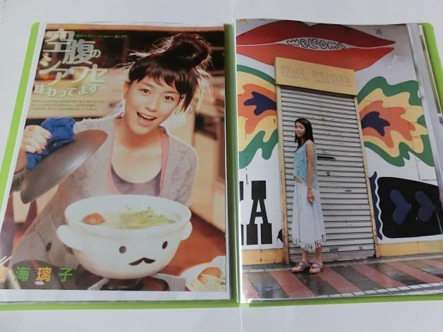成海璃子☆切り抜き20ページファイル冊子☆ < タレントグッズの