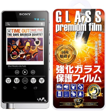 【GTO】SONY WALKMAN ウォークマン NW-ZX2/NW-ZX1/NW-F880 強