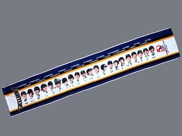 ☆【日本ハムFIGHTERS】SINCE2004イラスト マフラータオル
