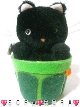 超キュート【ポリバケツin黒ネコ/猫】ぬいぐるみ